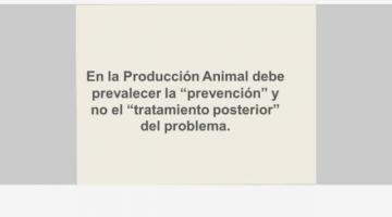 Producción Animal